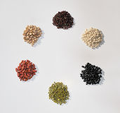 Bean Palette Stock Photography