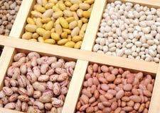 Bean and pea Stock Photo