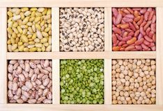 Bean and pea Royalty Free Stock Image