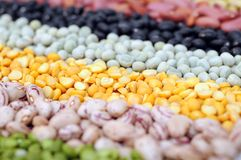 Bean and pea Royalty Free Stock Photos