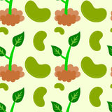 Bean and plant seamless background design Royalty Free Stock Image