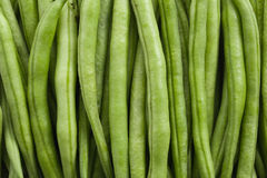 Bean pods background Royalty Free Stock Photography