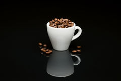 Bean's coffee cup Stock Photography