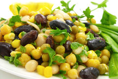 Bean salad. Plate of bean salad with vegetables Royalty Free Stock Image