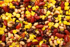 Bean Salad. Black beans, brown beans, kidney beans, and corn form this bean salad Stock Images