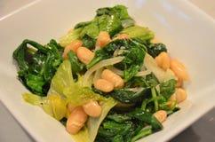 Bean Salads delizioso Immagini Stock Libere da Diritti