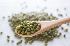 Bean seed Stock Photo