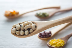 Bean seed. Ingredient : Bean seed on wood background Royalty Free Stock Photos