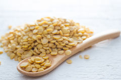 Bean seed. Ingredient : Bean seed on wood background Stock Images