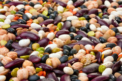 Bean seed mix Royalty Free Stock Photo