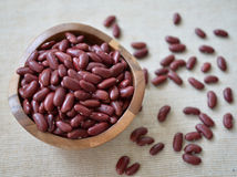 Bean in small bowl Royalty Free Stock Image
