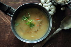 Bean soup with fresh herbs Stock Photos