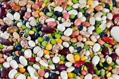 Bean Soup Mix Stock Photography