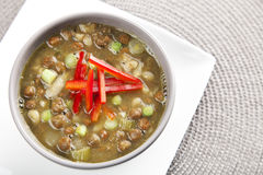 Bean Soup with Onions Royalty Free Stock Photo