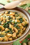 Bean with spinach. Stewed bean with spinach in the bowl Stock Images
