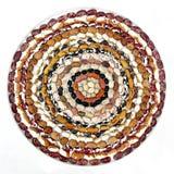 Bean Spiral Arkivbild