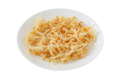 Bean sprout Stock Image