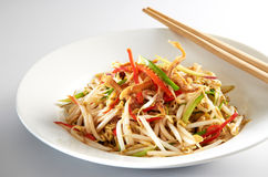 Bean Sprout Stock Photos