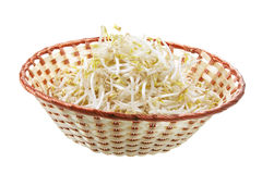 Bean Sprouts in Basket Stock Photo
