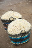 Bean Sprouts in basket Royalty Free Stock Images