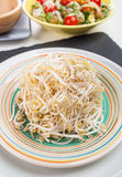Bean Sprouts of black slate tray. Plate of bean sprouts of black slate tray Stock Photography