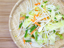 Bean Sprouts Royalty Free Stock Photos