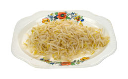 Bean sprouts on old tray Royalty Free Stock Photography