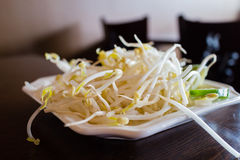 Bean sprouts on plate Stock Images