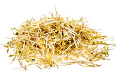 Bean sprouts on white background Stock Photography