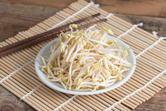 Bean sprouts in white plate. Stock Images