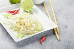 Bean sprouts in white plate. Fresh bean sprouts on white square plate and chopsticks. Concept of healthy foods, vegetarian food Royalty Free Stock Image