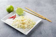 Bean sprouts in white plate. Fresh bean sprouts on white square plate and chopsticks. Concept of healthy foods, vegetarian food Stock Photo