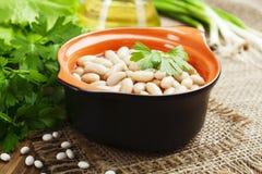 Bean stew Royalty Free Stock Photo