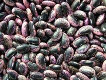 Bean texture Stock Photo