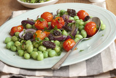 Bean and tomato salad Royalty Free Stock Photo