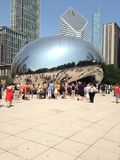 The bean Royalty Free Stock Photography