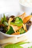 Beancurd et légumes de tofu photos stock