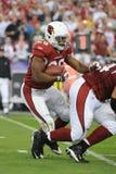Beanie Wells Running Back pour les Arizona Cardinals images libres de droits