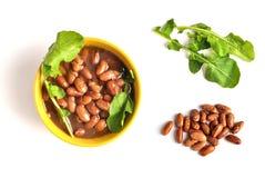 Beans_01 Royalty-vrije Stock Foto's