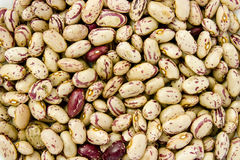 Beans 10 Royalty Free Stock Image
