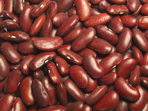 Beans. Macro photo of beans abstract background Stock Photography