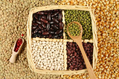 Beans. Various sorts of beans and cereals sorted in a basket. Decorative and colorful food abstract stock images