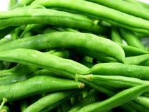 beans στοκ φωτογραφία με δικαίωμα ελεύθερης χρήσης