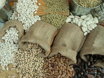 Beans. Misc raw legumes like haricots, rice, wheat and chick pea Stock Images