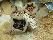 Beans. Misc raw legumes like haricots, rice, wheat and chick pea Royalty Free Stock Photos