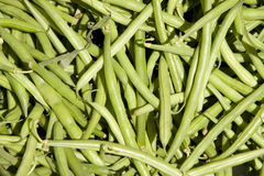 Beans. Some green beans in a box Stock Images
