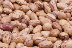 Beans. A container full of brown red beans Royalty Free Stock Image