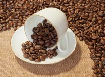 Beans. Coffee beans and a cup royalty free stock image