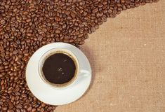 Beans. Coffee beans and a cup on sacking royalty free stock images