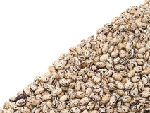 Beans. Mottled beans, laid out on the diagonal. On a white background Royalty Free Stock Images